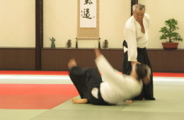 Thai Aikikai - At Sukhumvit